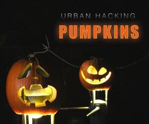Urban Hacking PUMPKINS!
