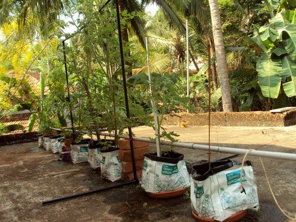 DIY Irrigation System for  Plants