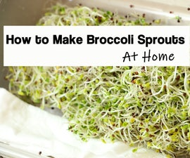 How to Grow Broccoli Sprouts in a Jar