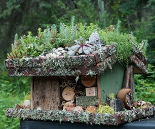 Bee Resort With Growing Rooftop