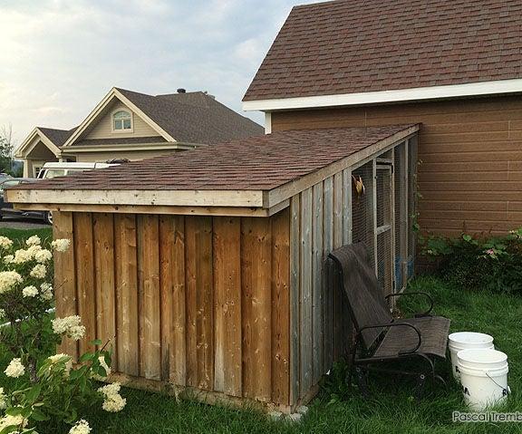 Lean-to Chicken Coop - Build Slanted Roof Backyard Hen Coop