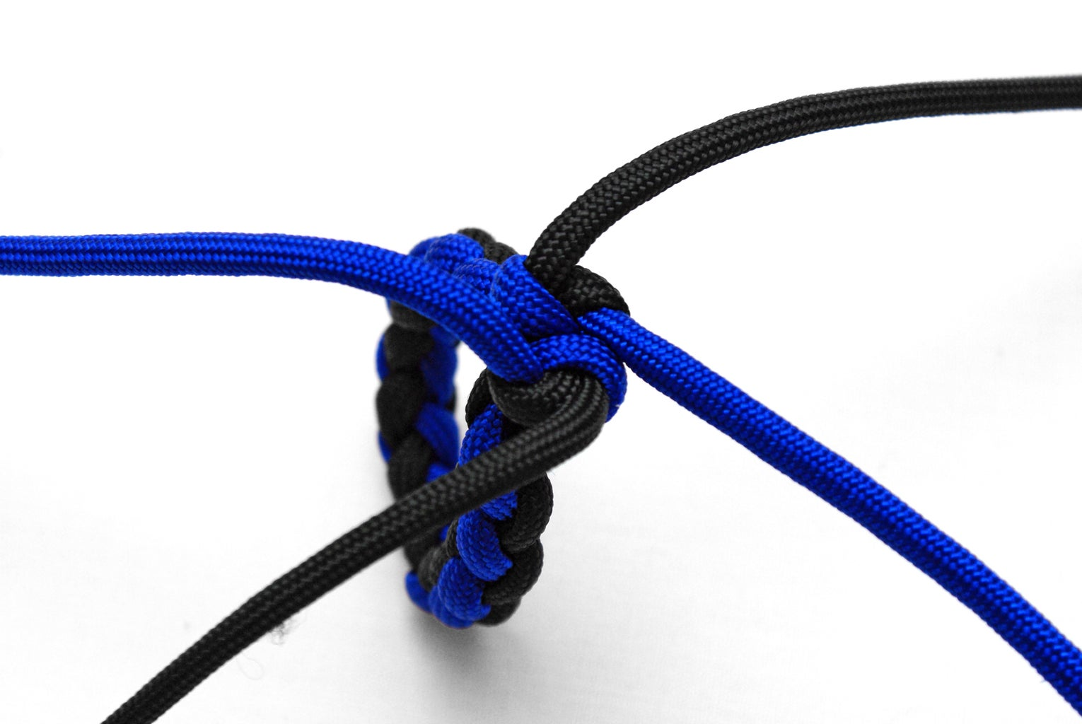 The Wall Knot