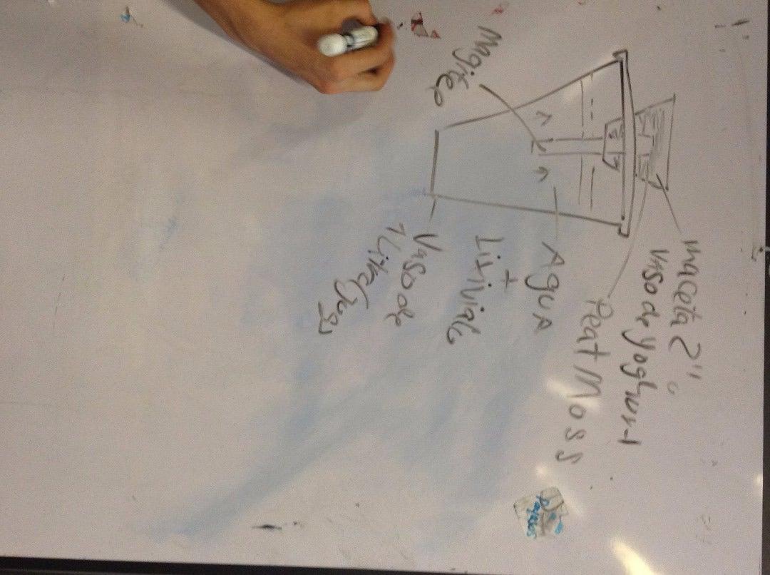 Hidroponia 1: Sistema De Pavilo/Wick System