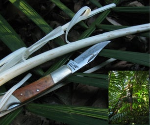 Jungle Survival - Food - Palm Cabbage (with Only a Pocket Knife)