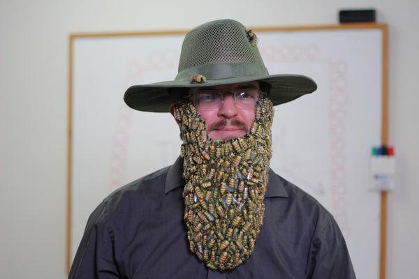 Beard of Bees Costume