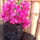 Rice Textured Square Vase/Planter