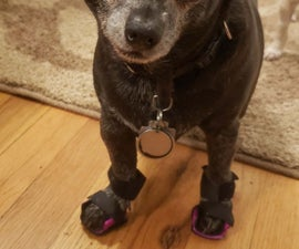 3D Printed Orthotic Shoes for a Tiny Dog