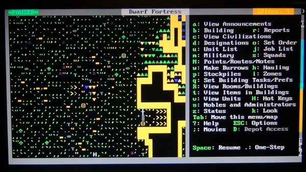 Dwarf Fortress in a Text Only Environment (Ubuntu) (no Sound)