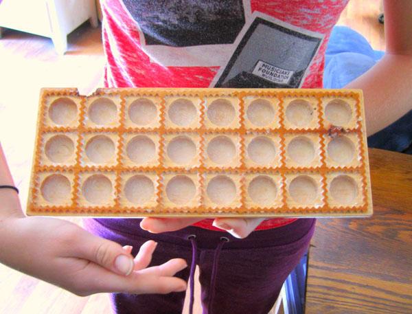 Homemade Ravioli Press