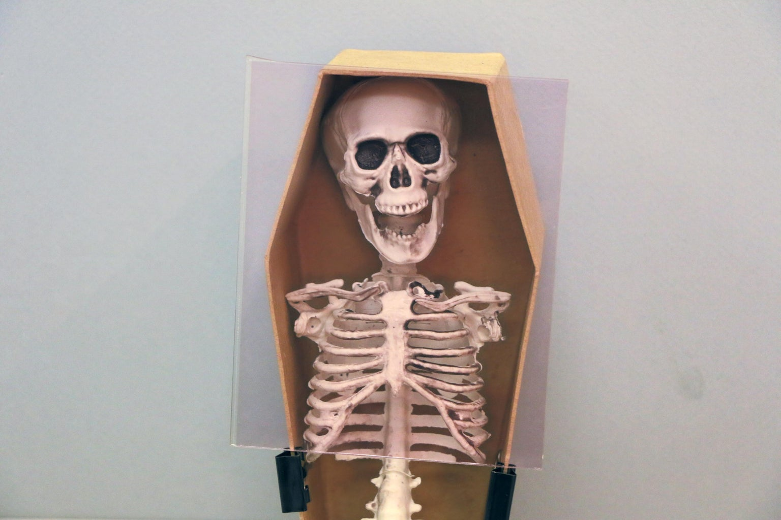 Skeleton Hologram Activated by Doorbell…
