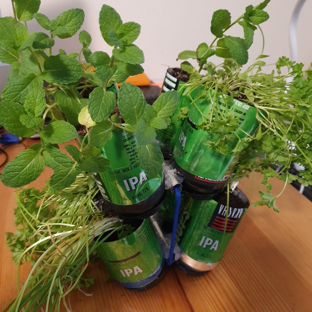 Self Watering Pot Plant From Drink Cans