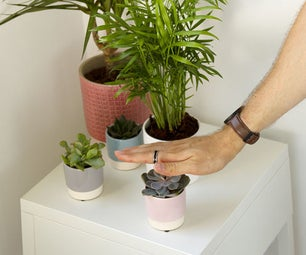Talking Plants