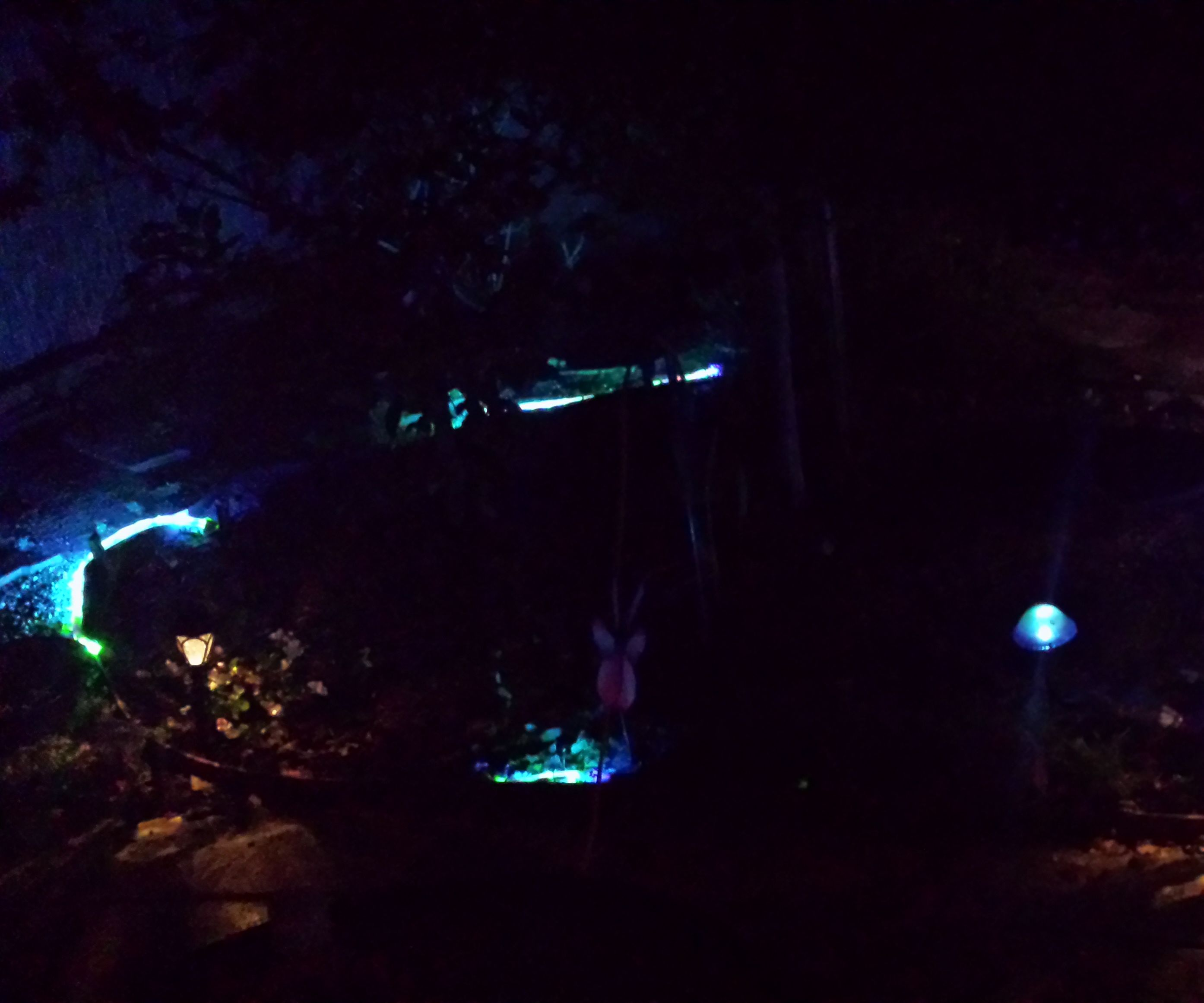 Solar powered color changing yard lighting.