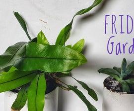 Self Watering Fridge Garden