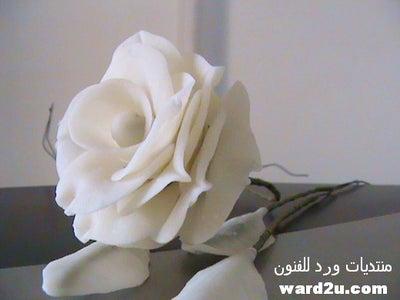 Cold Porcelain Flower Tutorial