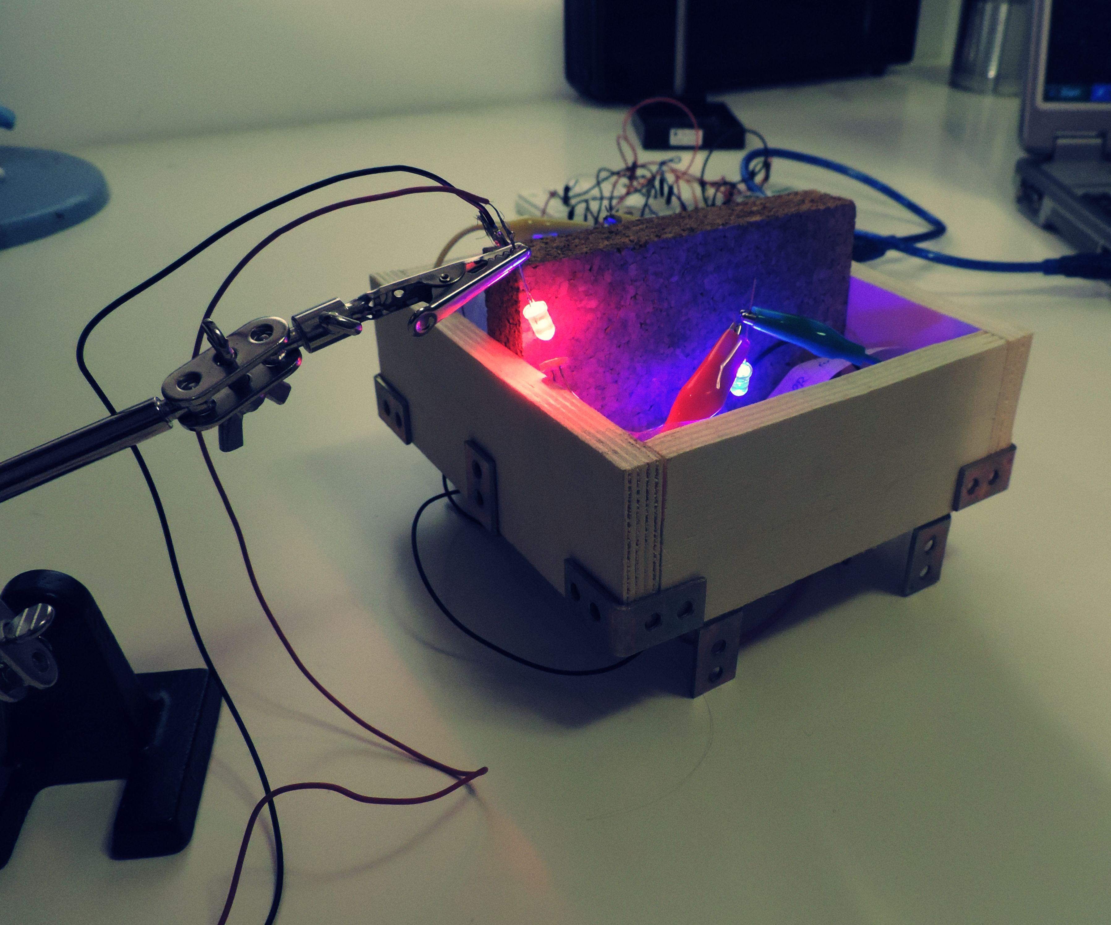 Play with glowing neurons? A novel framework for interactive neuron simulation in hardware.