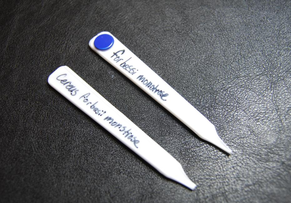 Easy, Cheap Garden Tags From Disposable Spoons